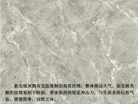 蒙娜丽莎瓷砖客厅强耐磨新北极灰9FMB2023PCM价格合理