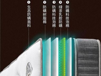 进口家居美国蕾丝绿茶乳胶床垫床垫护脊版效果图